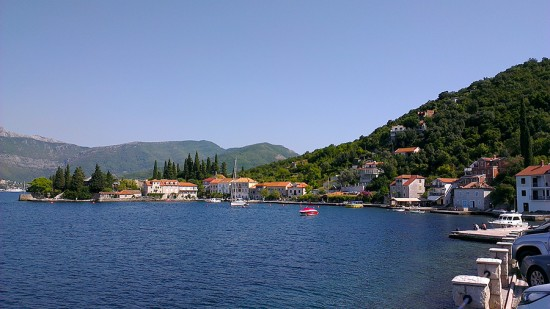 Rose, Montenegro by Jets Like Taxis