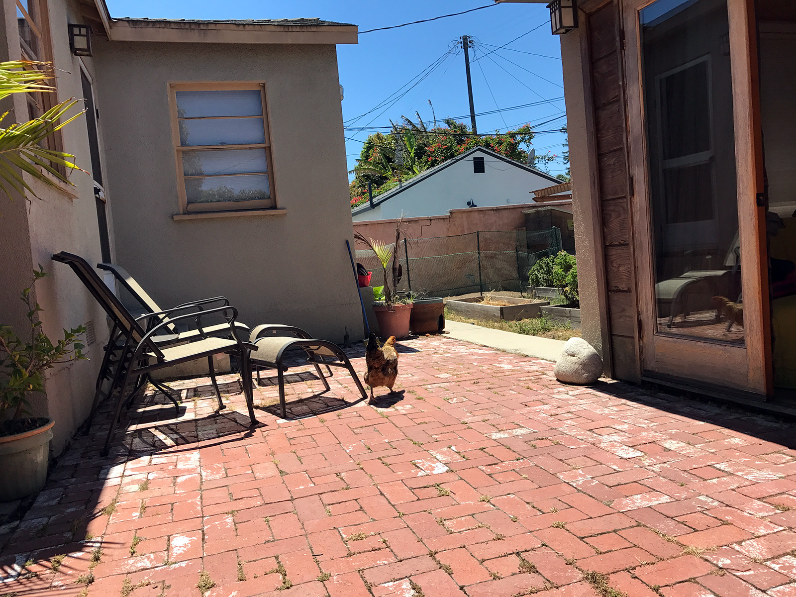 Airbnb in Venice, CA by Jets Like Taxis